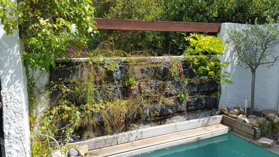 Mur végétal 30 avr 16.jpg
