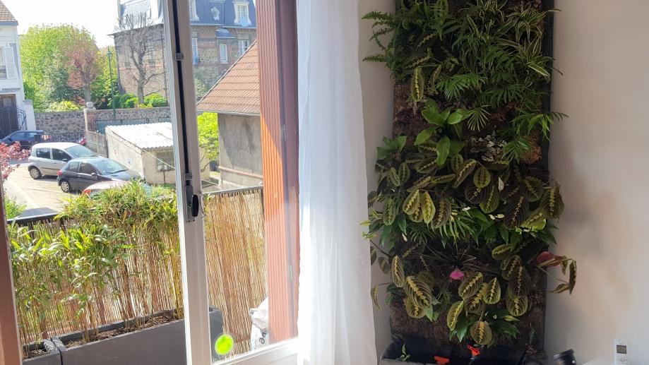 Perspective mur végétal et balcon 7 avr 17.jpg