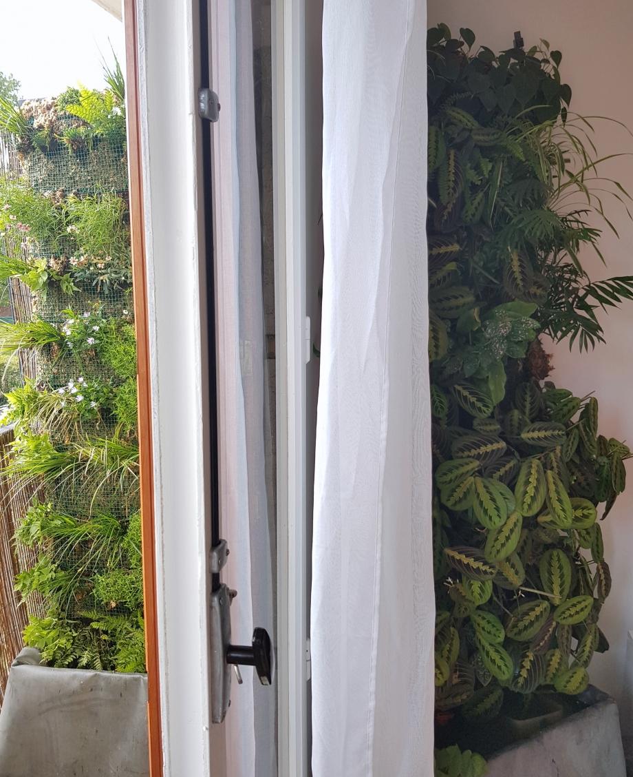 Vue 2 murs végétaux 16sept17.jpg