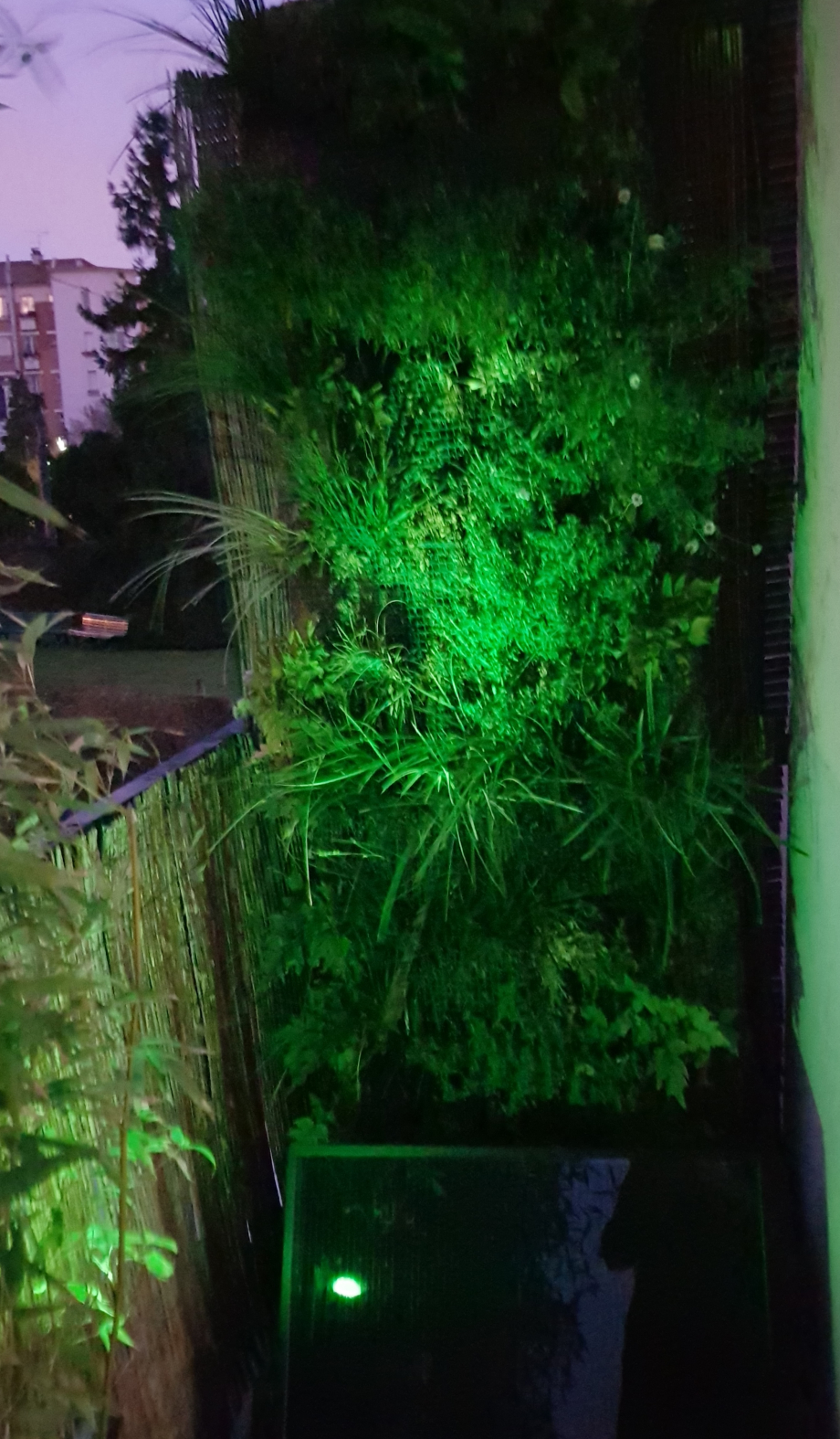 Eclairage mur ext vert 27 dec 17.jpg