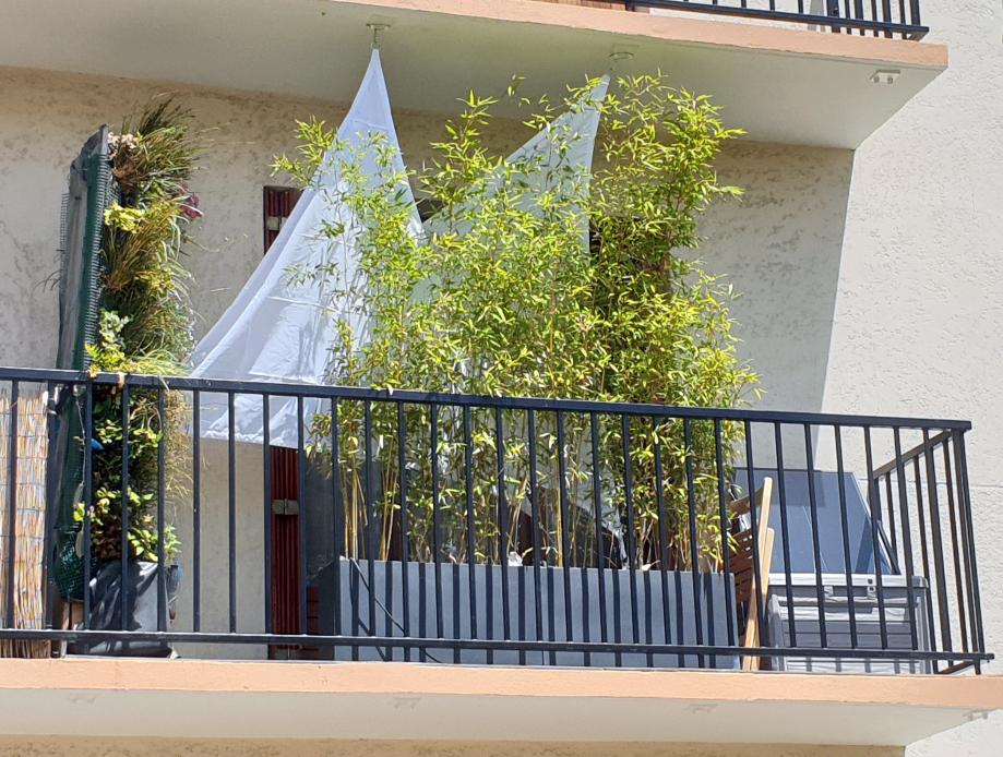 Voilages balcon T2 28 juin 2019.jpg