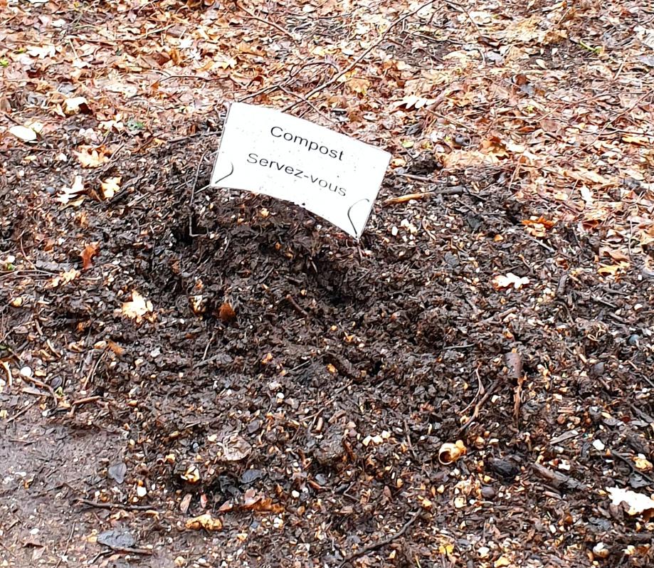 Compost  récupéré 2 mars 20.jpg