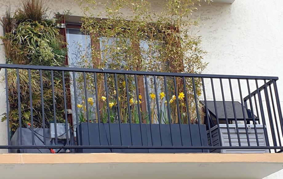 Vue aménagement balcon 14 mars 20.jpg
