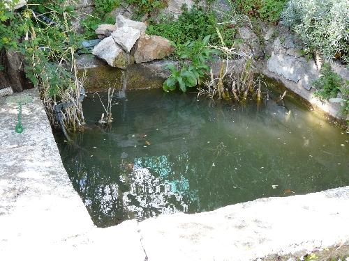 Bassin de jardin nettoyage de printemps pour la filtration comment cr er son jardin - Bassin de jardin nettoyage ...