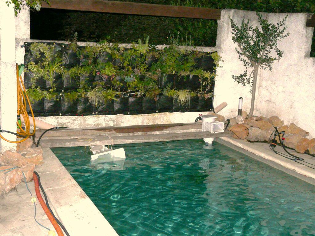 Un bassin aquatique naturel mon id e comment cr er son jardin m diterran en - Creer un bassin naturel ...