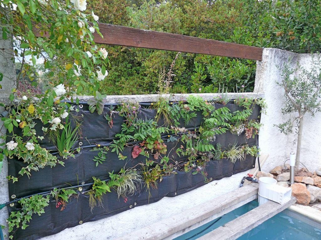 Mur v g tal au 29 avril 2011 comment cr er son jardin for Creer son mur vegetal
