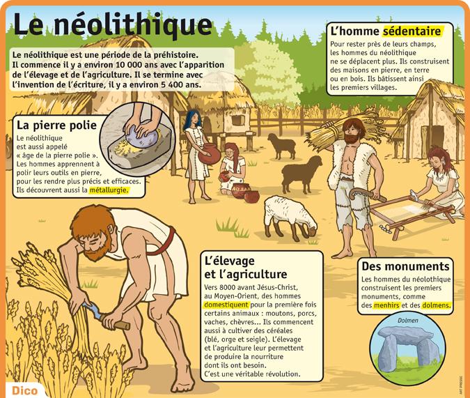 lpq35-le-neolithique.jpg