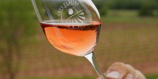 la-consommation-de-vin-rose-a-double-en-20-ans_254061_510x255.jpg