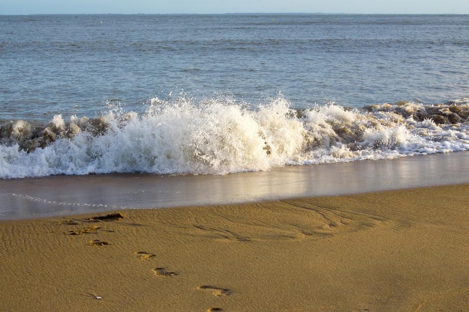 beach-2100366_1920
