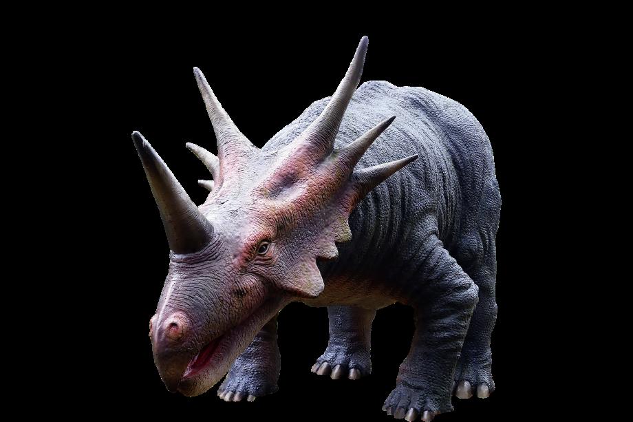 dinosaur-g0200fc130_1920