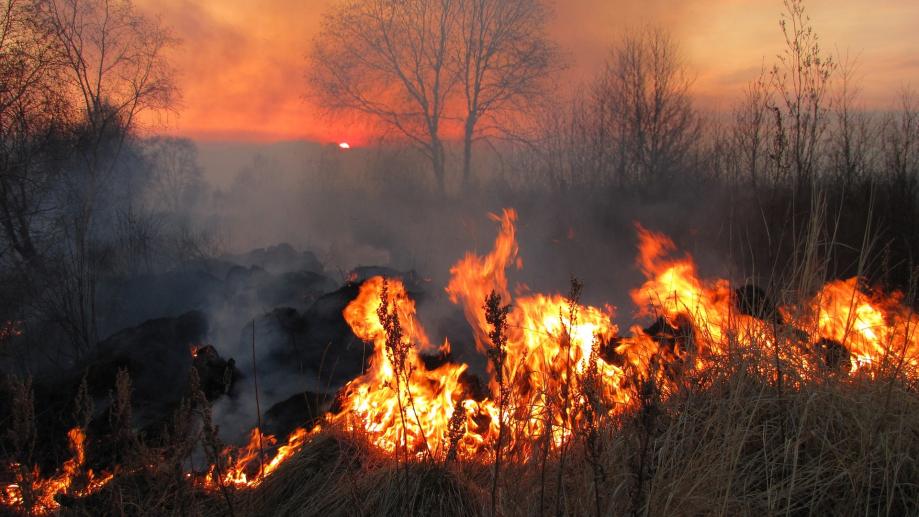 fire-2551646_1920