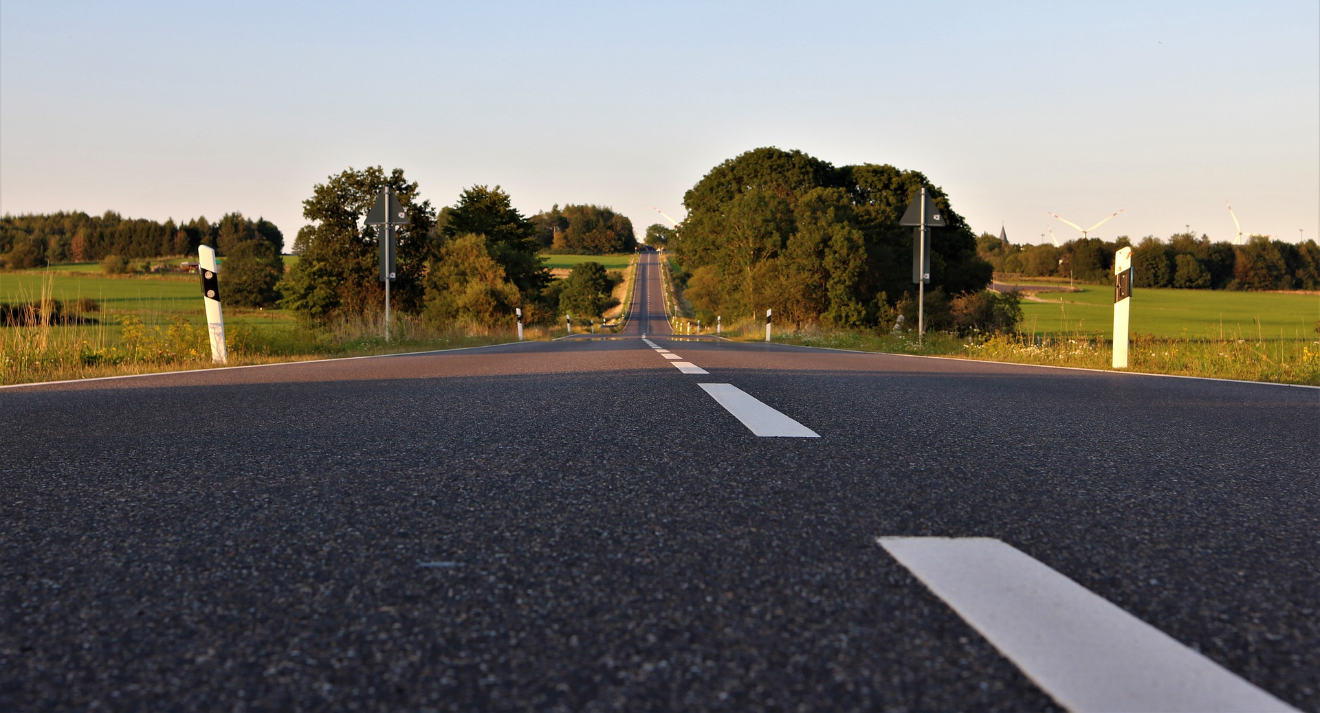 frog-perspective-on-the-federal-road-4432526_1920