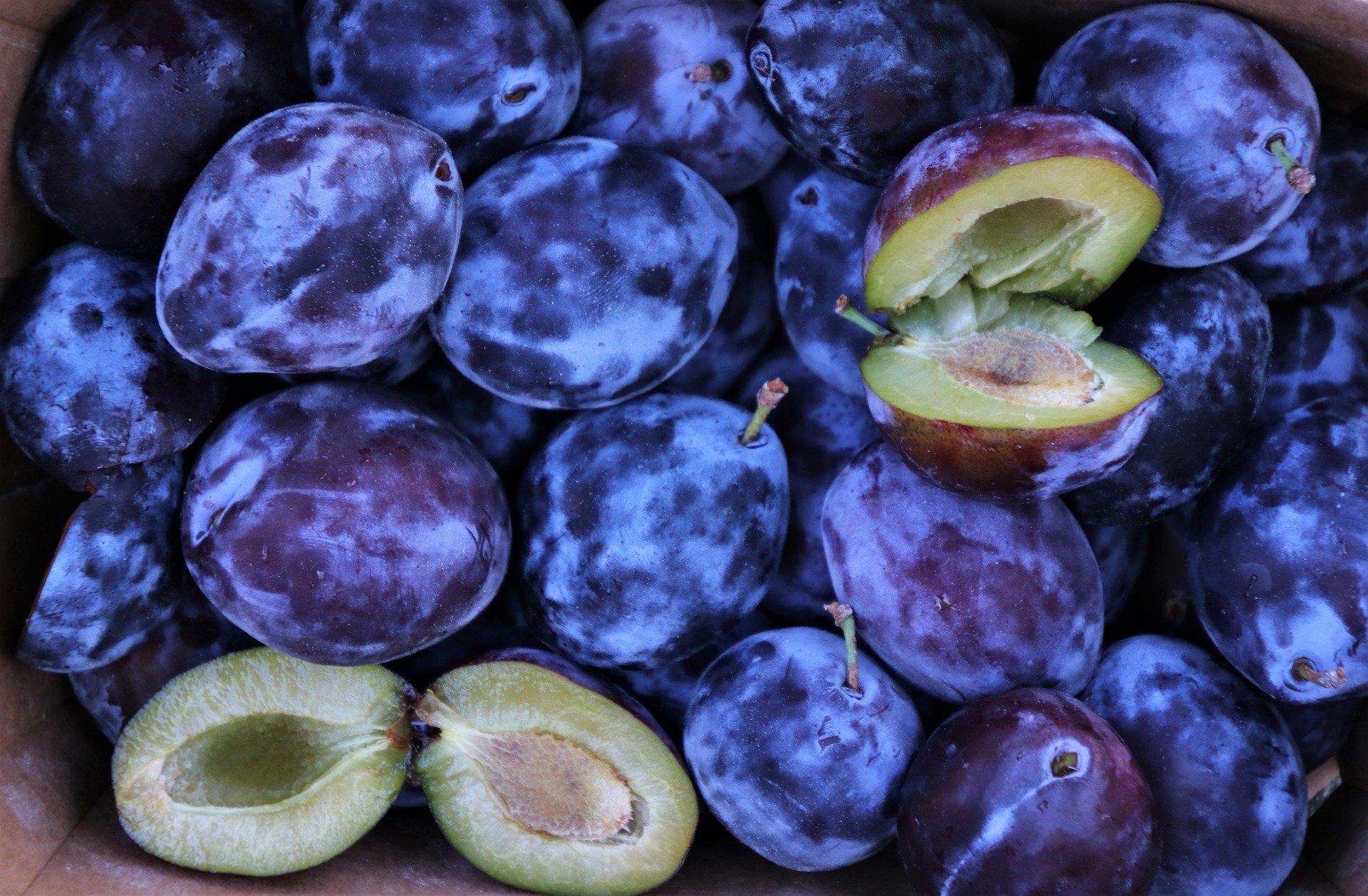fruit-5426690_1920