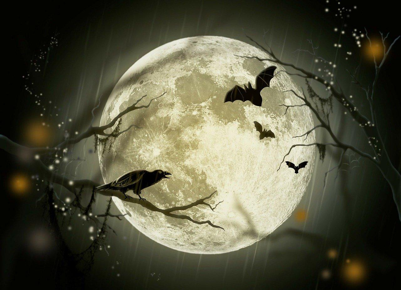 halloween-gd5cb2074a_1280