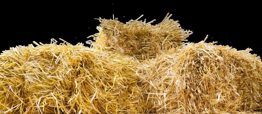 straw-1674953_1920