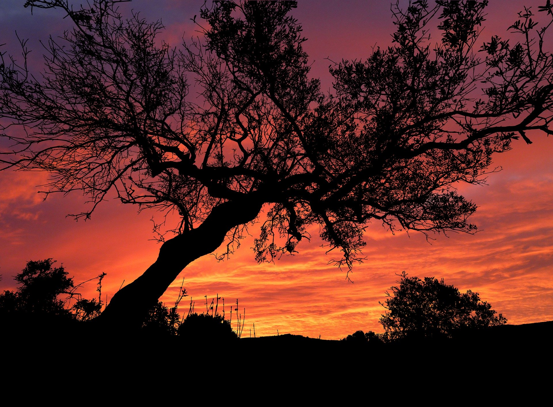 sunset-5335709_1920