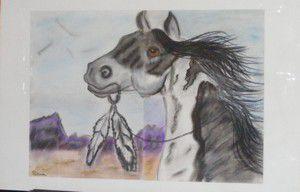 Le cheval indien