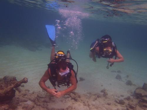 diving3.JPG