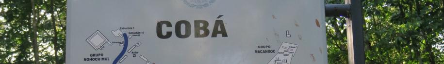 COBA.jpg