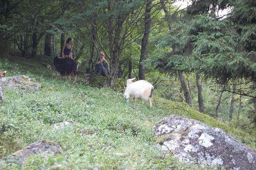 moi et helene avec biabolix et zlathé été 2008