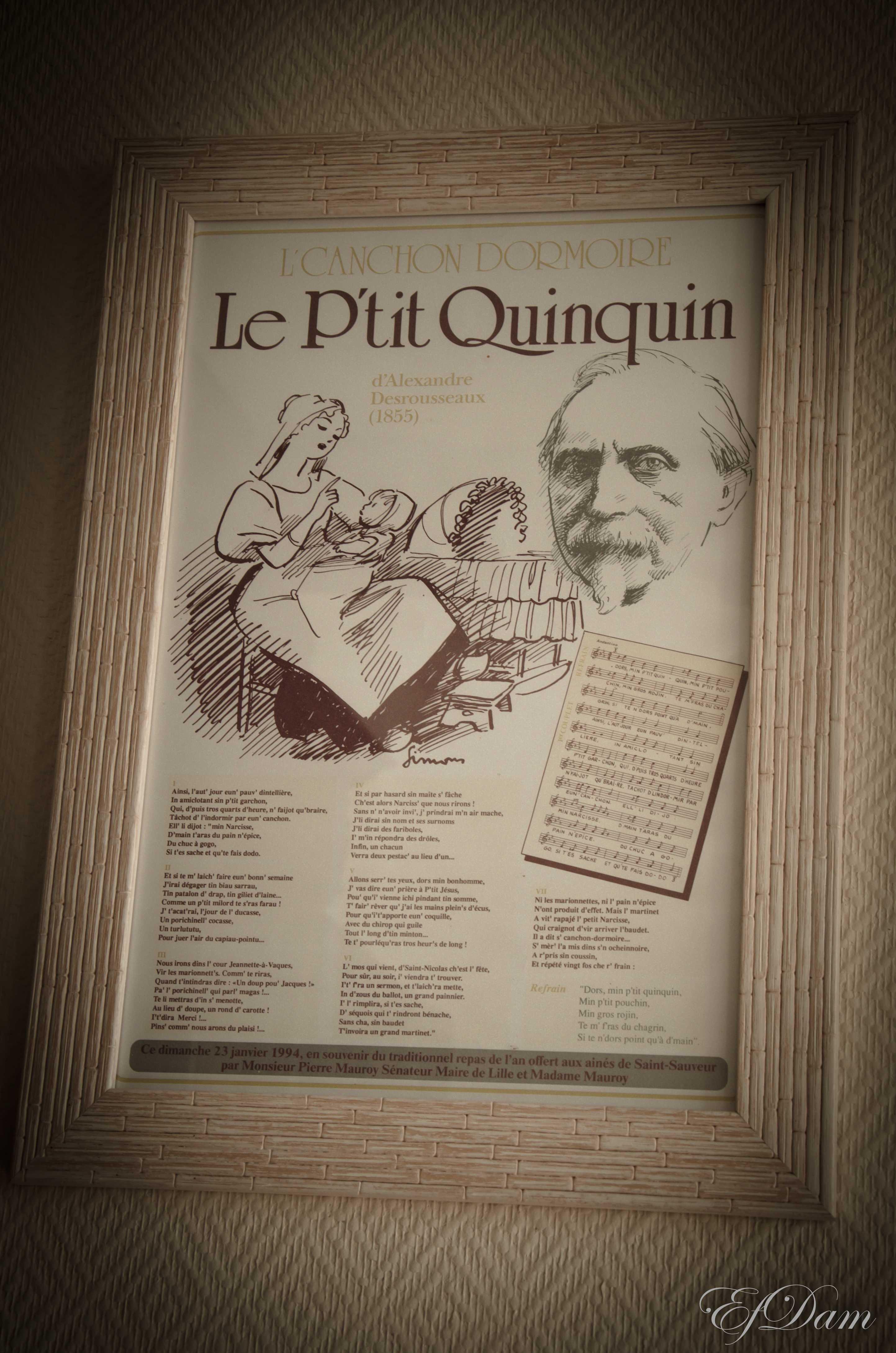 Quinquin-F.jpg