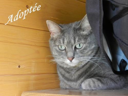 Agathe Adoptée.jpg
