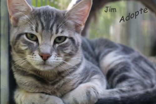 Jim (2).jpg