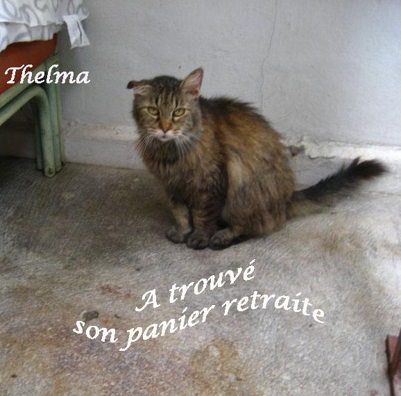 Thelma panier.jpg