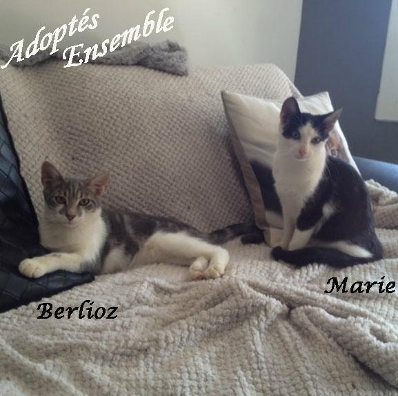 Berlioz et Marie copie.jpg
