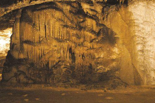Grotte de Bédeilhac (Ph. Laurent Crassous)