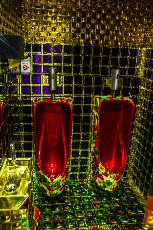 les royales toilettes de votre seigneurie sont avancées !!!.JPG