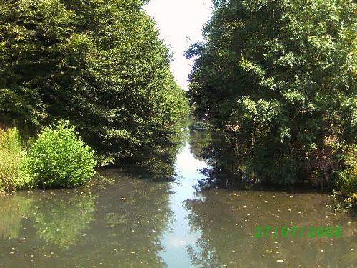 Cette rivierre s insinuant entre les arbres fait le tour du chateau