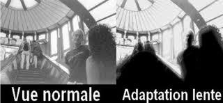 vue adaptation lente.jpg