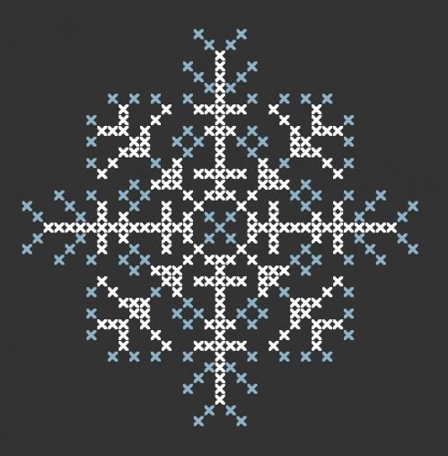etoile des neiges 1.jpg