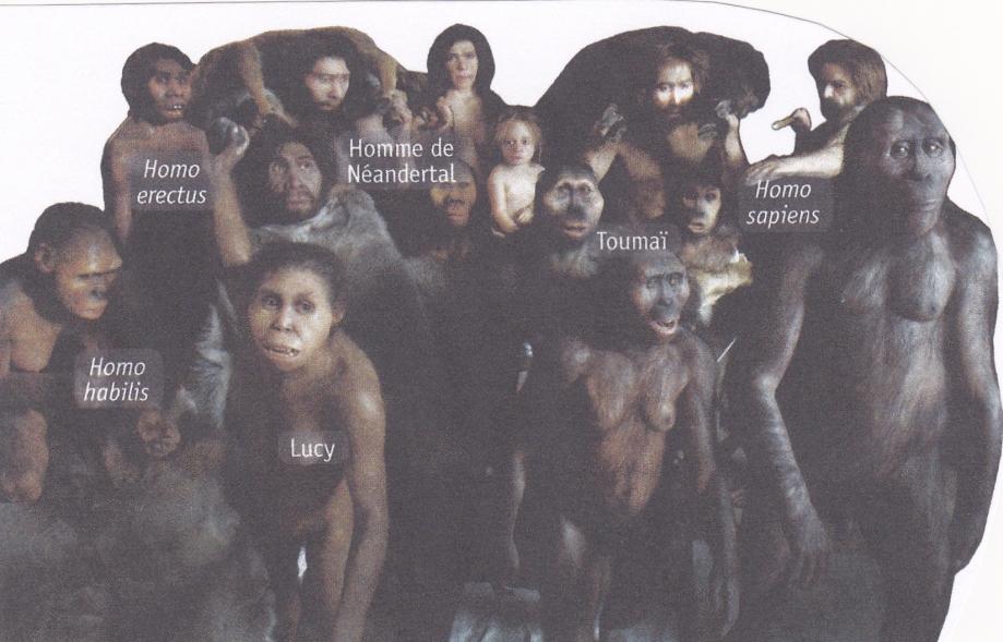 Galerie de l'humanité.jpg