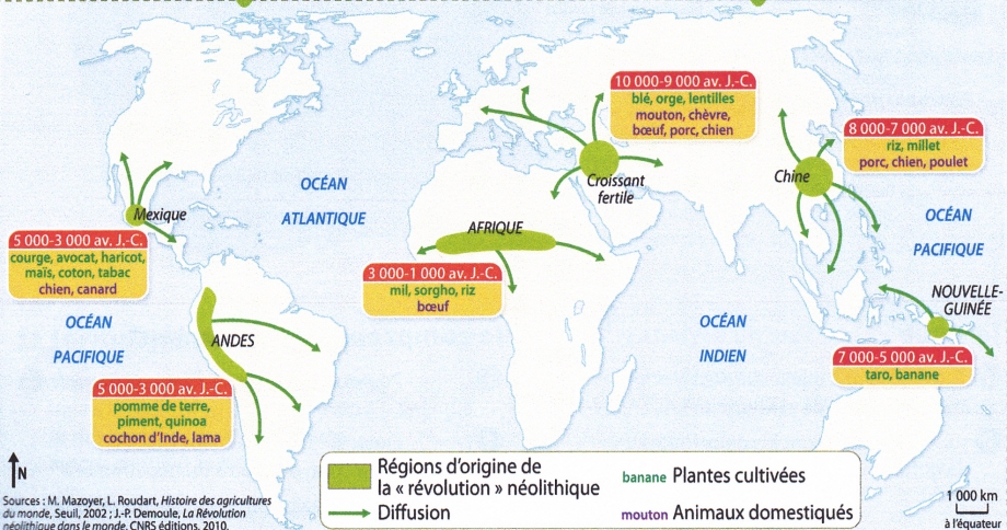 Origine agriculture et élevage 2.jpg