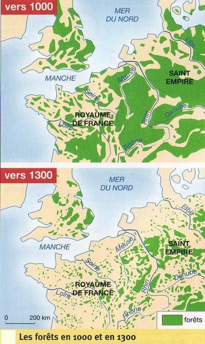 Forêt entre 1000 et 1300 (carte).jpg