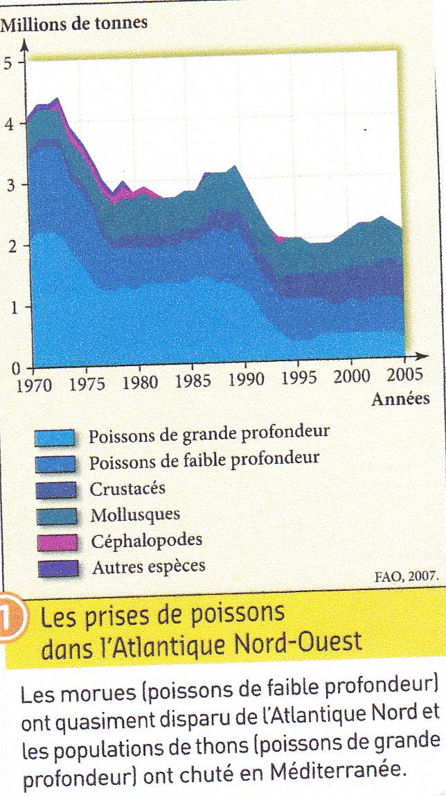 Poissons. Evolution prises dans Atlantique Nord.jpg