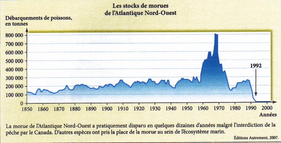Morue. Evolution stocks  Atlantique N-O.jpg