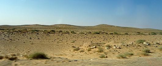 Climat. Steppe africaine.jpg
