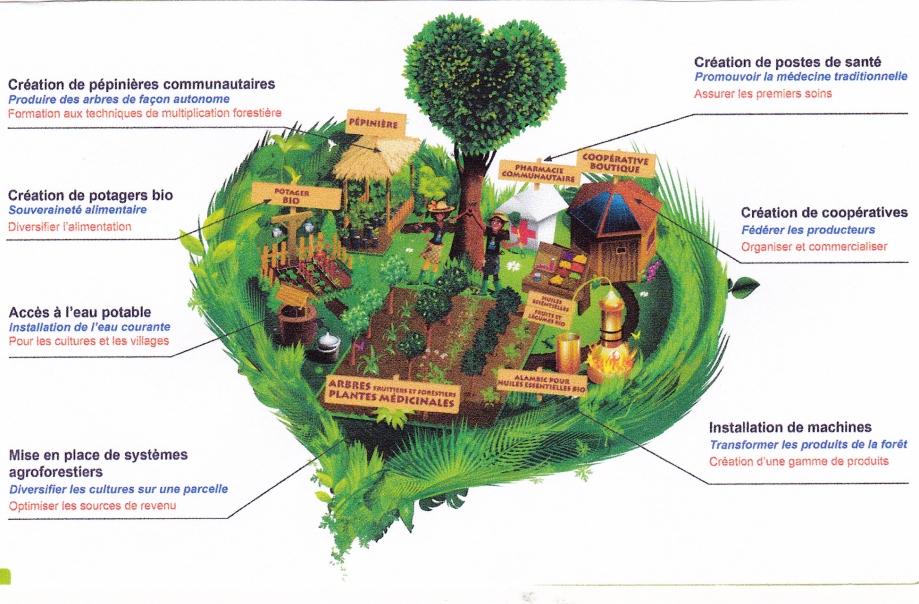 Guyane. Aménagements locaux durables (schéma).jpg