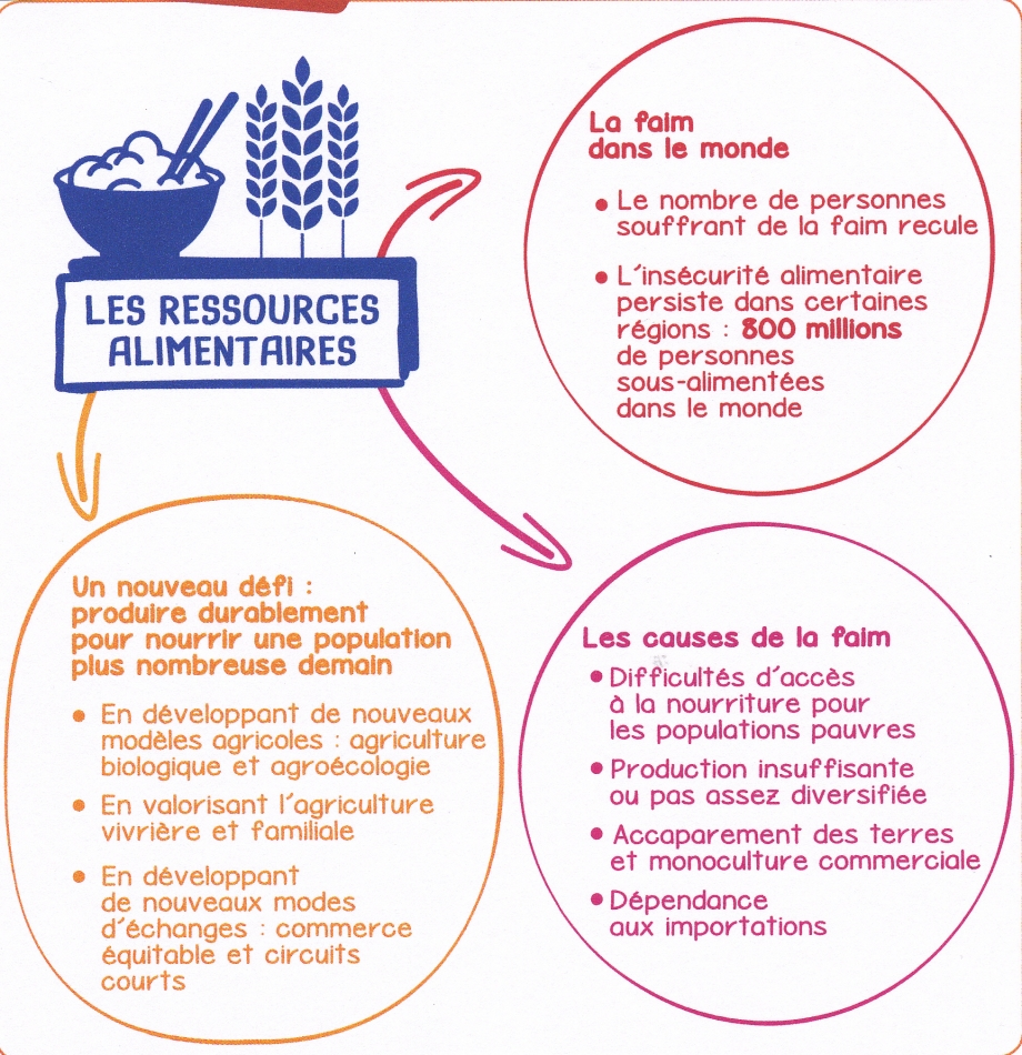 CM. Les ressources alimentaires.jpg
