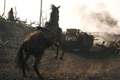 Cheval de guerre 7.jpeg