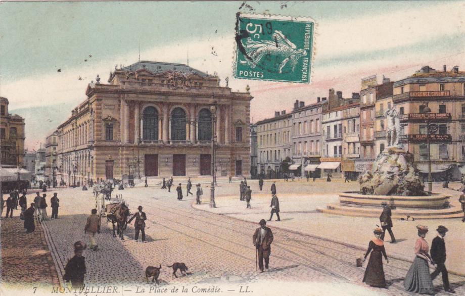 34. Montpellier LL 7-2.jpg