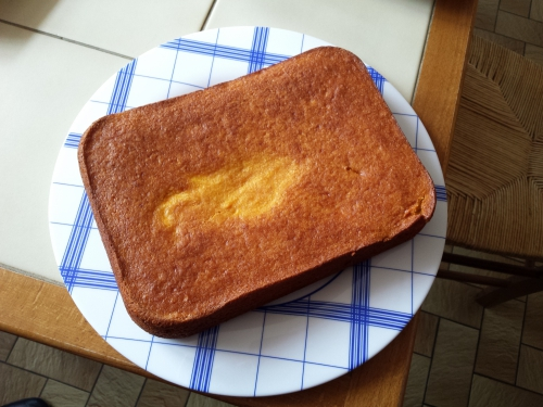 Gâteau au clémentines et aux amandes 3.jpg