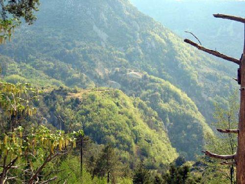 Mine de l'Eguisse, vue générale