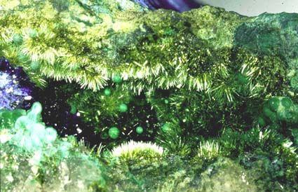 Olivenite, malachite et azurite, mine de L'Hubac de Jourdan