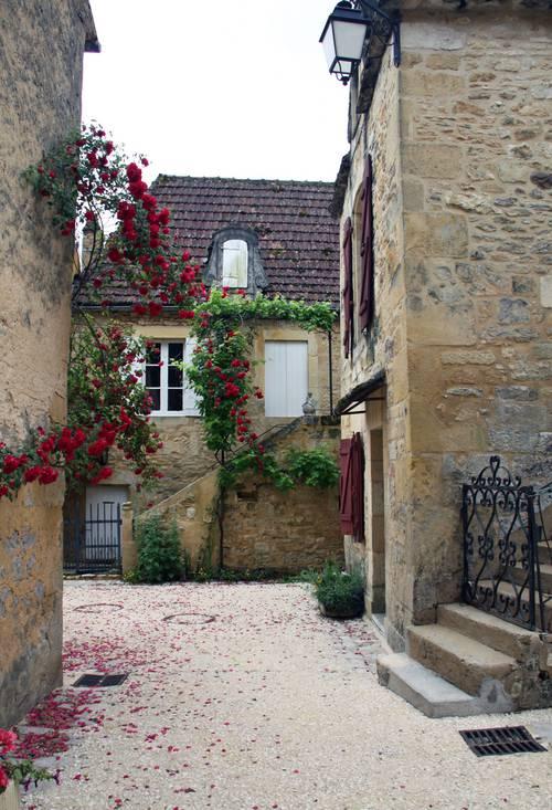 Village fleuri 201 1.jpg