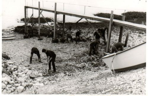 Le plan d'eau  1964 et à suivre.....