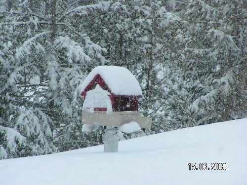 Ma cabane au Canada sur un perchoir (Joliete-Québec) copyright Malou.
